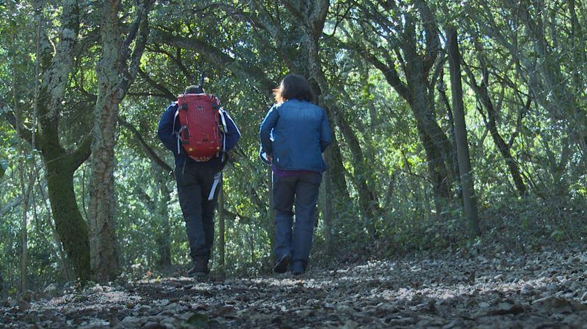 """""""Passo a Passo"""". Qual a distância entre Portugal e o mundo?"""