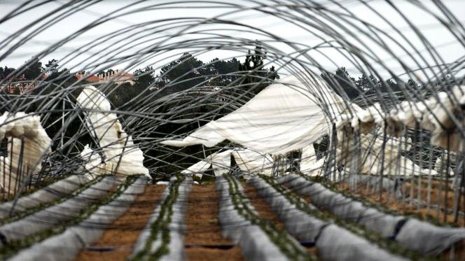 Óbidos pede declaração de calamidade pública após estragos do mau tempo