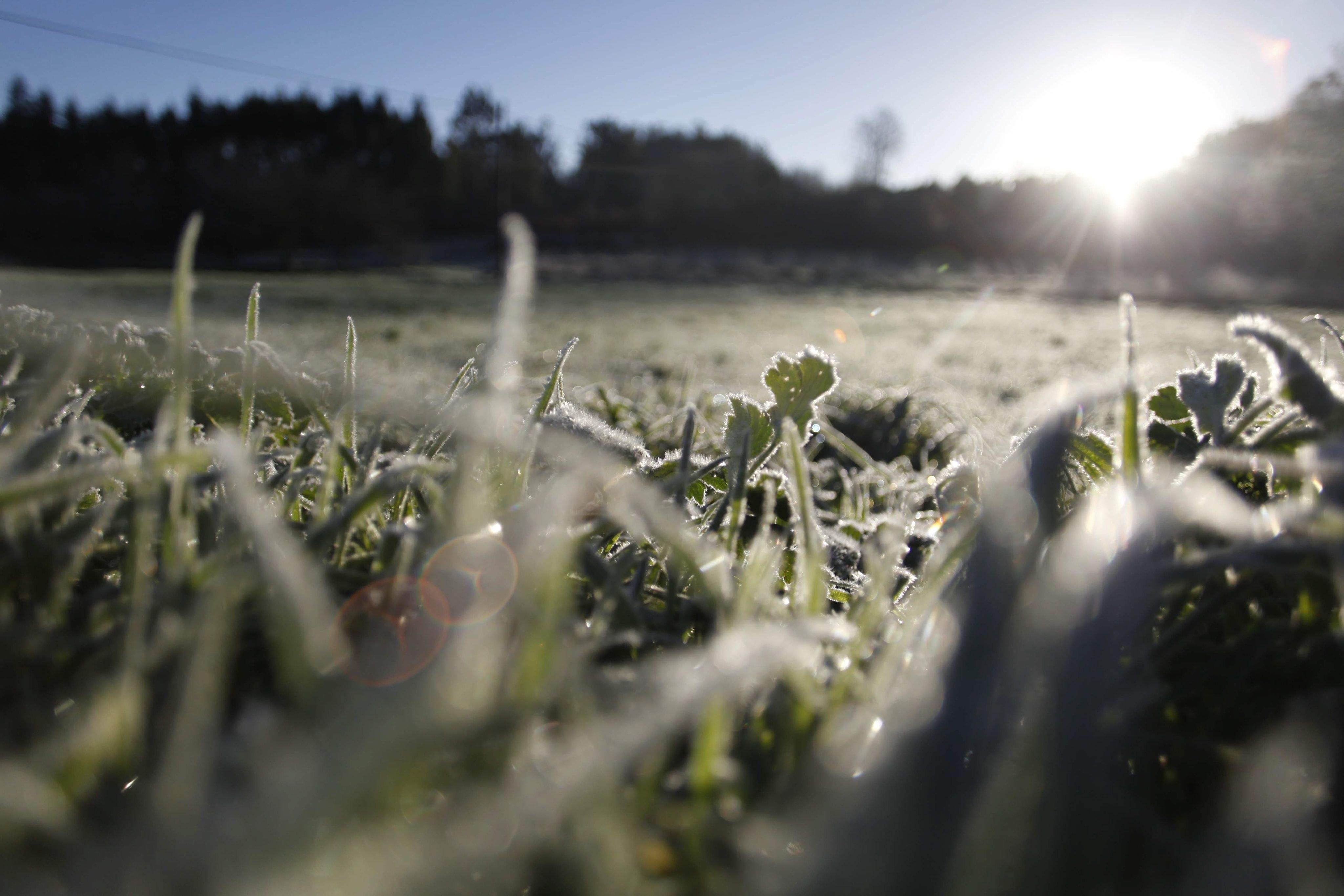 O tempo vai ficar ainda mais frio para o final da semana. Em declarações à  Renascença 72fb5ad8f83