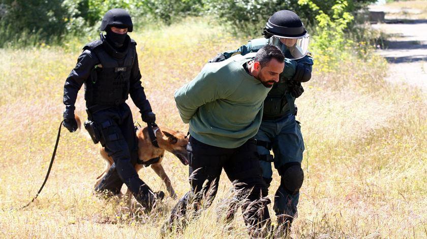 """GNR e Guardia Civil, prendem um presumivel """"terrorista"""" durante uma acção no âmbito do exercício antiterrorista """"Barreira Ibérica 2016"""". Foto: Nuno Veiga/Lusa"""