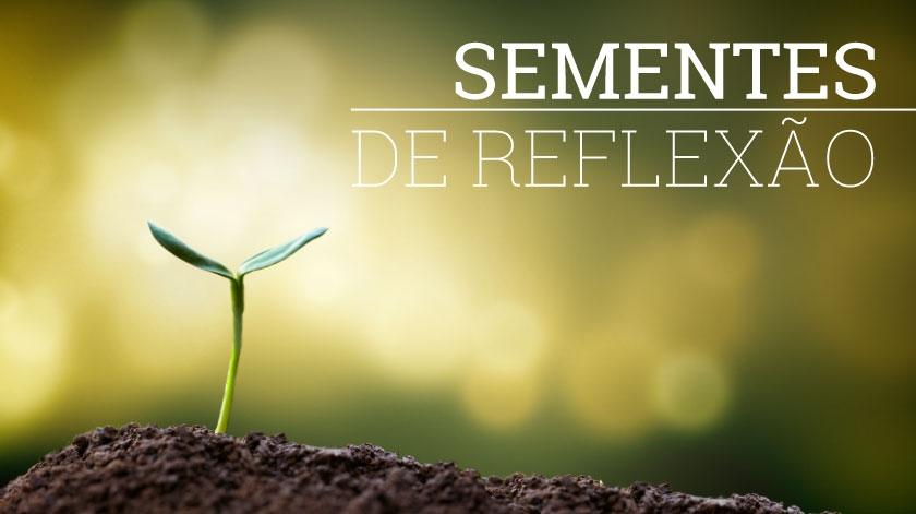 Sementes de Reflexão - 11/06/2018