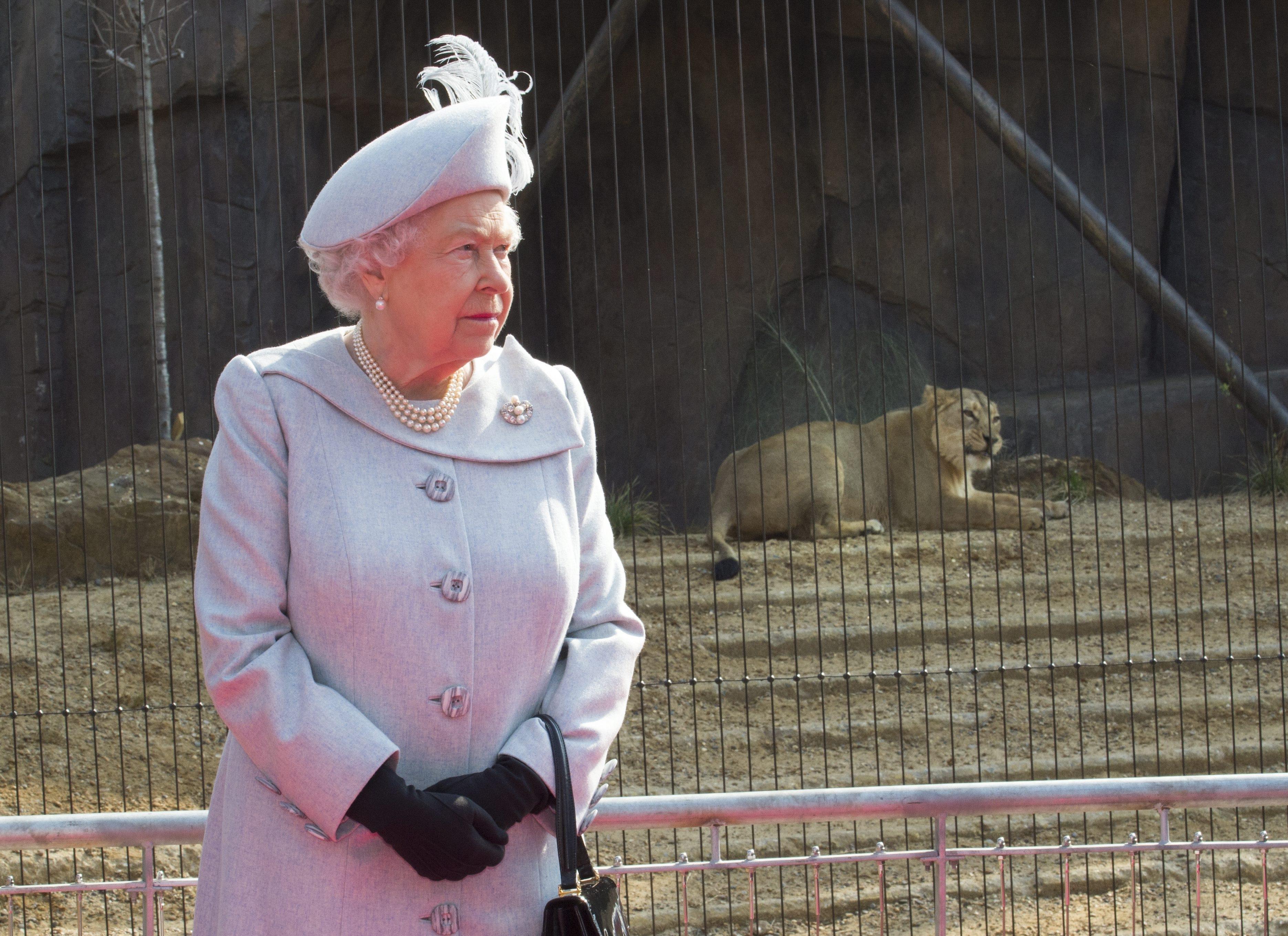 Os chapéus da Rainha - Renascença 5d62e71d8ec